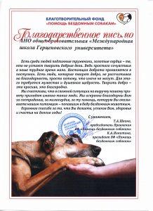 Акция по сбору корма для бездомных животных