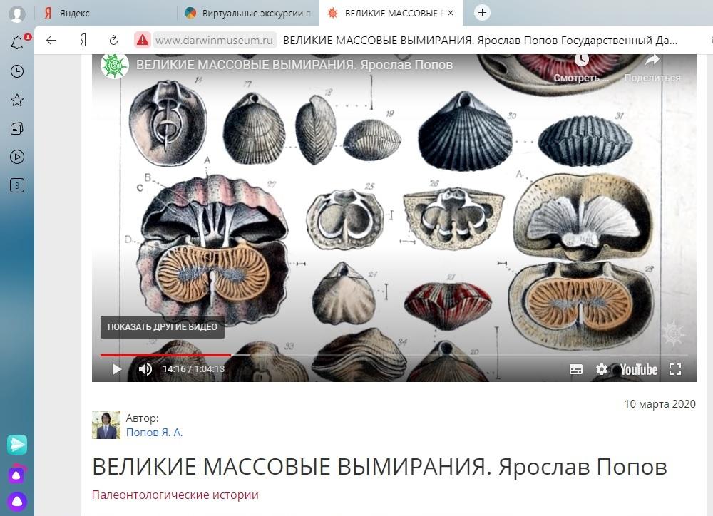 Виртуальная экскурсия в Государственный Дарвиновский музей